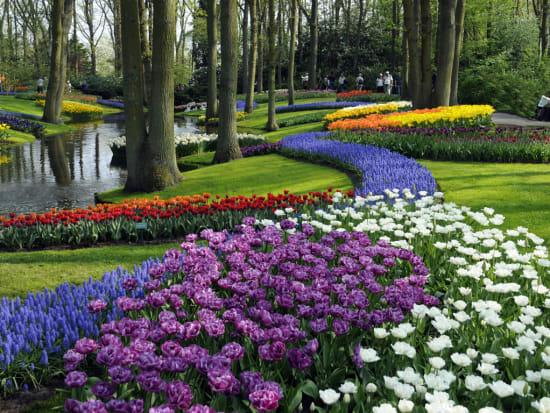 tulips keukenhof garden amsterdam lookout - Amsterdam Garden
