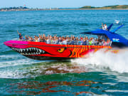 USA_Boston_Harbor Cruises_Codzilla