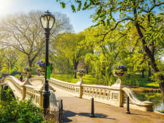 Central Park TV & Movie Sites Tour