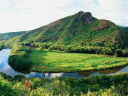USA_Hawaii_Wailua-River-D
