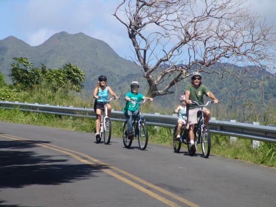 hawaii-downhill-bike-12