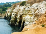 USA_San Diego_Five Star Tours_La Jolla Beach