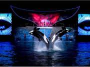 USA_San Diego_Five Star Tours_Sea World