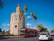 Seville2_P_5_b935750a-ccfc-434f-bee3-dbea6e00d103 (1)