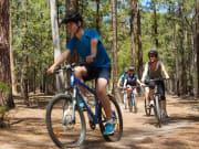 you yangs bike tour4
