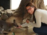 Handfeeding Wallabies