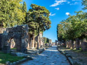 Pompeii Group Tour from Naples