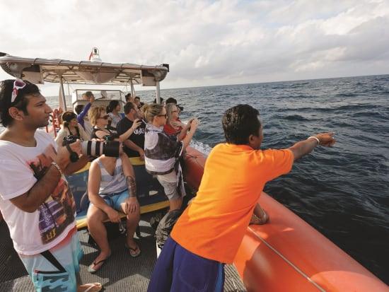 3 Island Cruise - Ocean Rafting (4)
