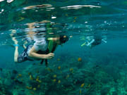 3 Island Cruise - Ocean Rafting (40)