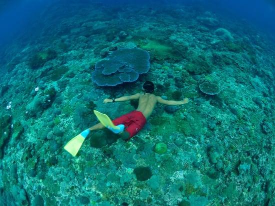 3 Island Cruise - Ocean Rafting (37)