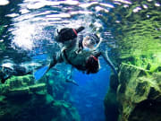 Iceland, Golden Circle, Snorkeling