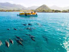 Sea Hawaii 01