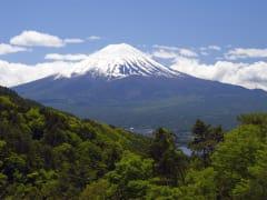 Mt Fuji green