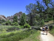 Pinnacles shutterstock_271217507