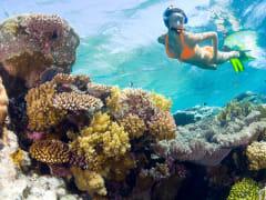 USA_Hawaii_Molokini_LADY-ABOVE-REEF