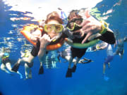 USA_Hawaii_Maui_Couple-Snorkeling