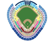 Yankees_full_seating