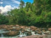 Malaysia_Kuala_Lumpur_Taman Negara_shutterstock_563213443