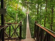 Malaysia_Kuala_Lumpur_Taman_Negara_Canopy_Walk_shutterstock_183658235