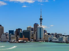 Auckland Small-Group Guided City Tour