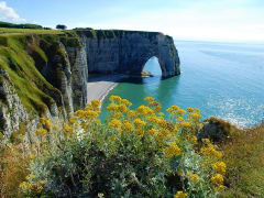Normandy D-Day Landing Beach Day Small Group Tour