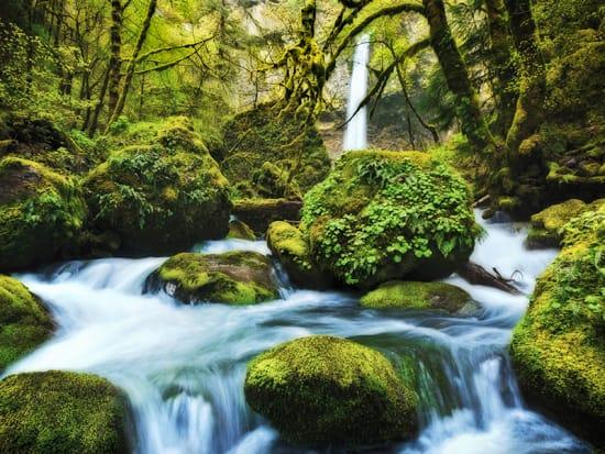 USA_Portland_Evergreen Escapes_Columbia Gorge