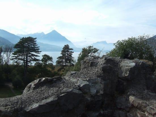 w2 from the Ruine  Weissenau