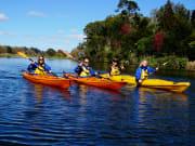 Wairoa River Tour #1