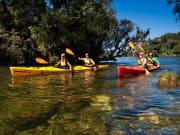 Waimarino Rotorua Kayak Tour (3)