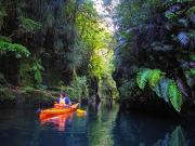 Waimarino Lake McLaren Kayak Tour 2