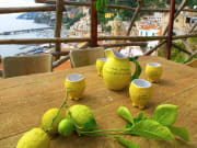 Limoncello Farm, Amalfi Coast