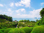 Korea_Geoje_Oedo_Botanical_Gardens_shutterstock_644454577