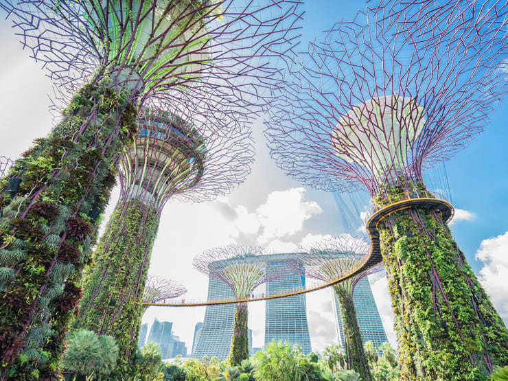 Singapore Gardens by the Bay and Sands SkyPark Ticket with