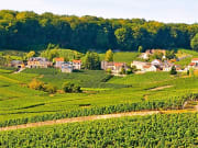 champagne_village