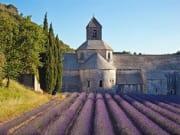 Senanque Abbey - Provence Lavender Tour