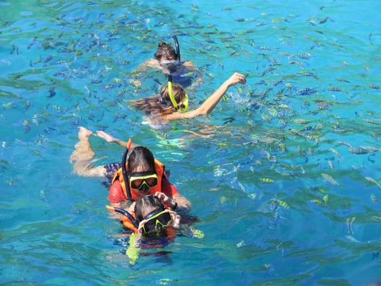 Snorkel (3)