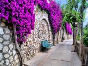 Charming lanes around Capri