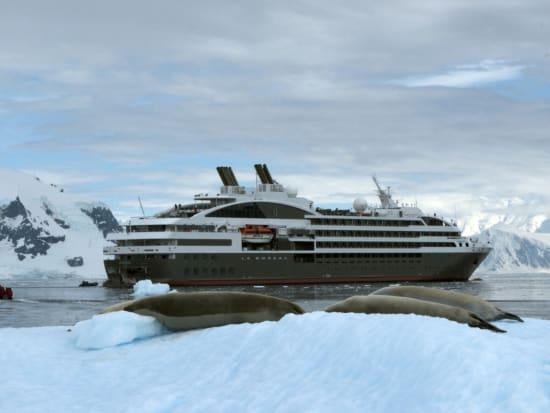 mathieu gesta le boreal antarctica hd