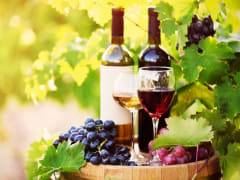 USA_Portland_Hood River Valley_Wine tasting