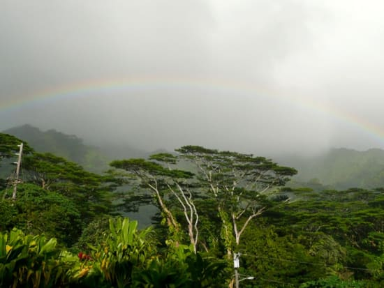 AAE_Manoa_rainbow01