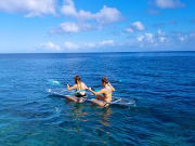Hawaii_Big Island_Sea&Board Sports_Glass Bottom