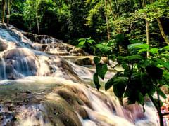 Jamaica_Dunn'sRiverFalls_123RF_68135500_ML
