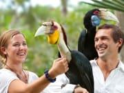 Bali_Bird_Parkingrk