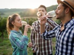australia_perth_bickley_valley_wine_tasting