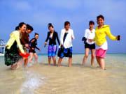 幻の島&体験ダイビング (28)