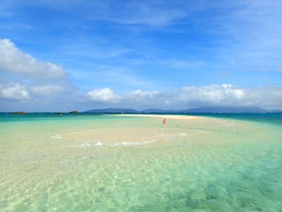 幻の島&体験ダイビング (6)