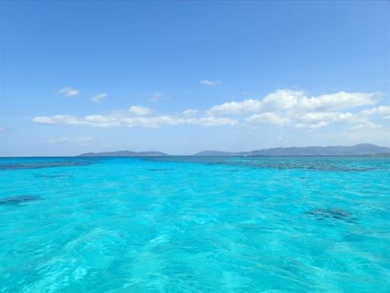 幻の島&体験ダイビング (12)