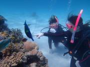 幻の島&体験ダイビング (18)