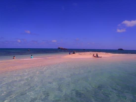 幻の島&体験ダイビング (19)