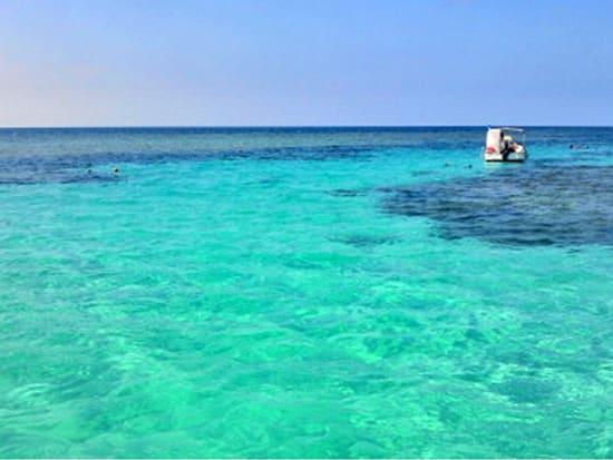 幻の島&体験ダイビング (24)